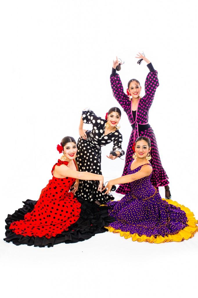 Flamenco Fantastico Senior Company